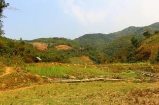 Laos Travel Blog 3 (145)