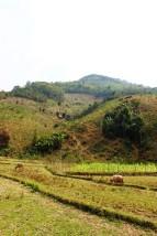 Laos Travel Blog 3 (147)