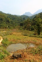Laos Travel Blog 3 (148)