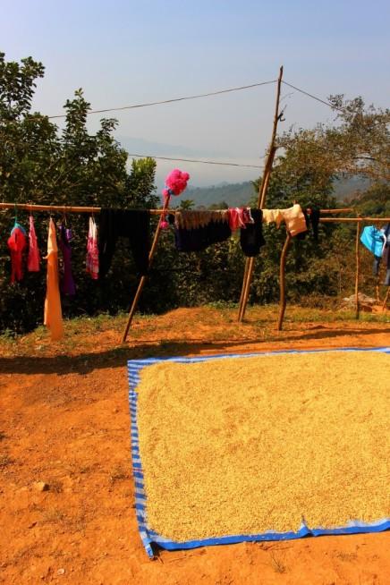 Laos Travel Blog 3 (174)