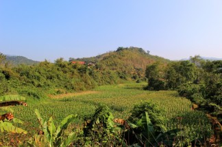 Laos Travel Blog 3 (182)