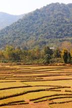 Laos Travel Blog 3 (185)