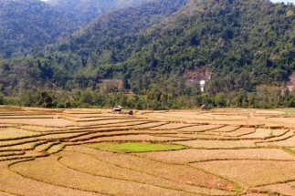 Laos Travel Blog 3 (186)