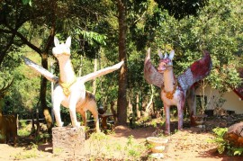 Laos Travel Blog 3 (196)
