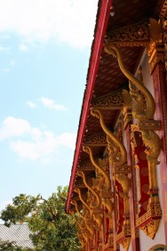 Laos Travel Blog 3 (30)