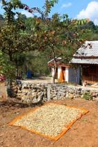 Laos Travel Blog 3 (4)