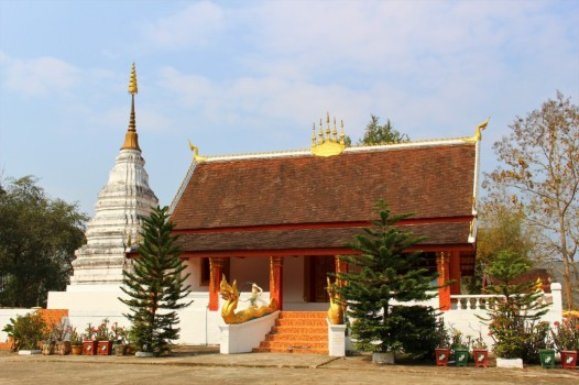 Laos Travel Blog 3 (46)