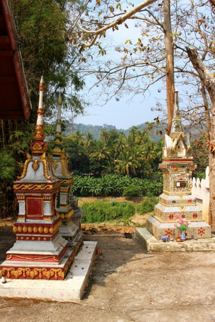 Laos Travel Blog 3 (48)