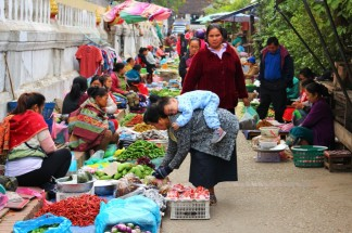 Laos Travel Blog 3 (50)