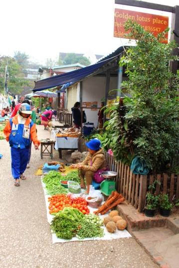 Laos Travel Blog 3 (52)