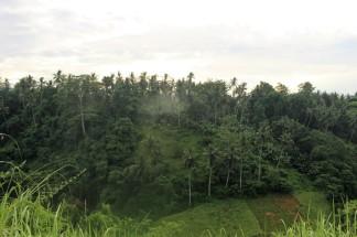 Bali Travel Blog (26)