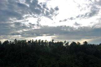 Bali Travel Blog (27)