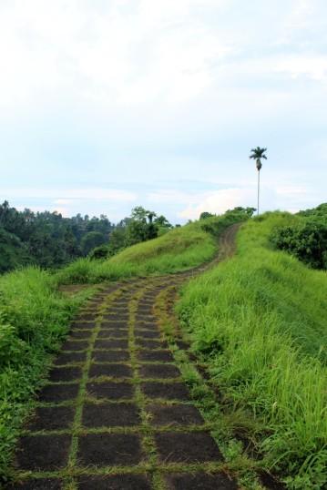 Bali Travel Blog (28)