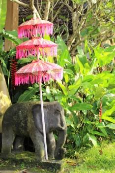 Bali Travel Blog (33)