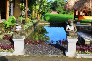Bali Travel Blog (44)