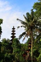Bali Travel Blog (47)
