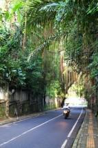 Bali Travel Blog (50)