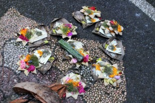 Bali Travel Blog (55)