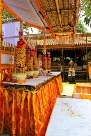 Bali Travel Blog (8)