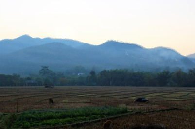 Northern Thailand Travel Blog (127)