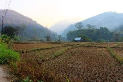 Northern Thailand Travel Blog (129)