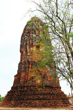 Northern Thailand Travel Blog (191)