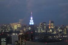 Tokyo Travel Blog (102)