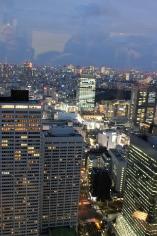 Tokyo Travel Blog (103)