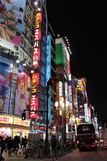 Tokyo Travel Blog (107)