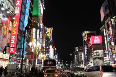 Tokyo Travel Blog (109)