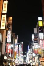 Tokyo Travel Blog (111)
