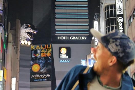 Tokyo Travel Blog (114)