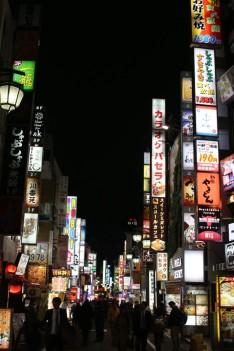 Tokyo Travel Blog (115)