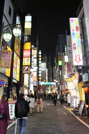 Tokyo Travel Blog (117)