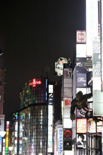 Tokyo Travel Blog (120)