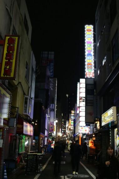 Tokyo Travel Blog (122)