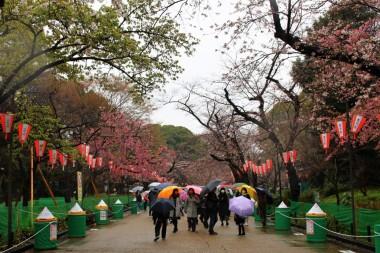 Tokyo Travel Blog (127)