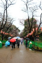 Tokyo Travel Blog (128)