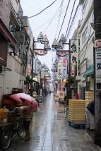 Tokyo Travel Blog (131)