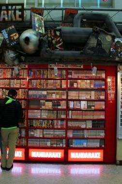 Tokyo Travel Blog (132)