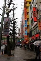 Tokyo Travel Blog (18)