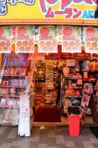 Tokyo Travel Blog (19)