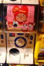 Tokyo Travel Blog (21)