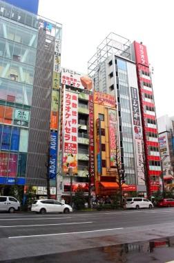 Tokyo Travel Blog (36)