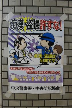 Tokyo Travel Blog (38)