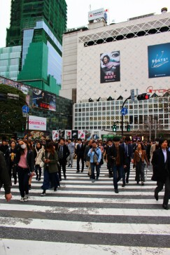 Tokyo Travel Blog (4)