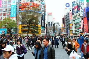 Tokyo Travel Blog (5)