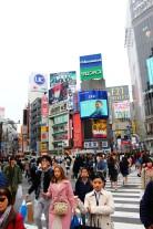 Tokyo Travel Blog (6)