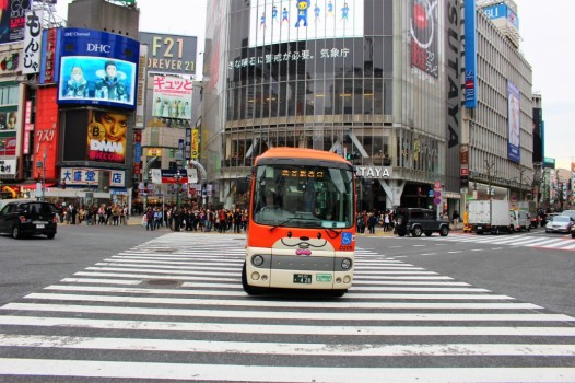 Tokyo Travel Blog (8)