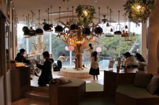 Tokyo Travel Blog (82)